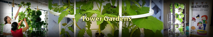 Banner for Tower Gardens